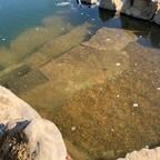 PVC im Teich