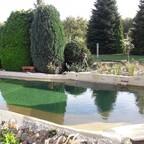 Der fertige Teich mit Pflanzen