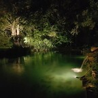 nachts wird auch mal gerne geschwommen...