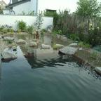 Unser Schwimmteich Bau Juni 2013