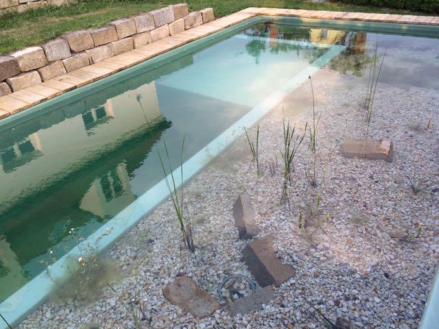 Eichendielen um den Schwimmteich, Holzsteg fertig!