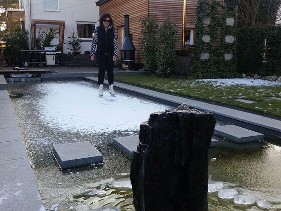 Teich im Winter 2017