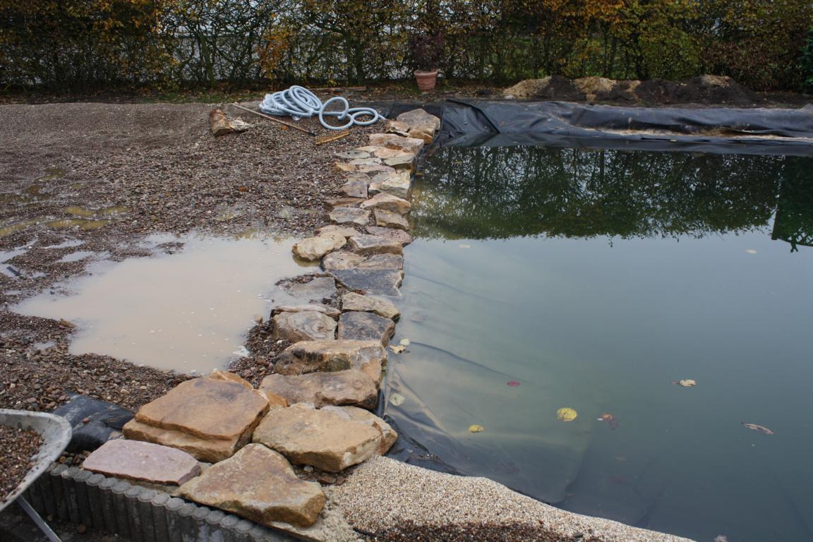 Schwimmteichbau ab November 2012