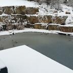 Unser Teich im Winter